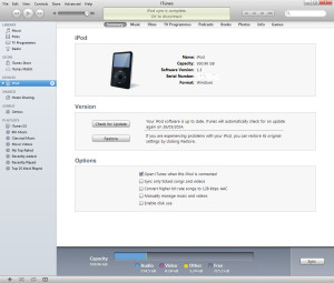 iTunes and the 1Tb iPod